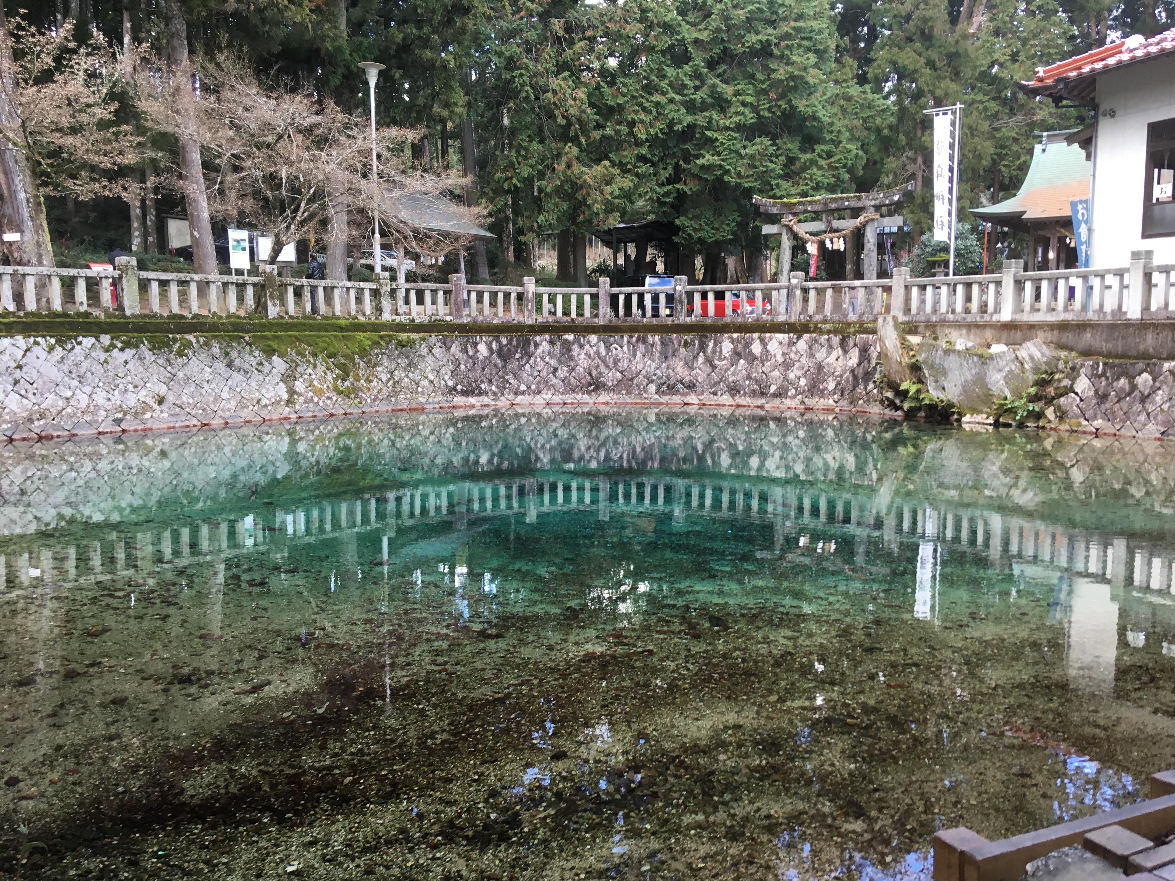 山口県美祢市のエメラルドグリーンの池、別府弁天池に行きました。